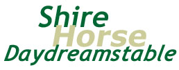 titolo: shire horse daydreamstable